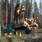 Profitieren Sie von unserer 20-jährigen Erfahrung als Dienstleister in der Forstwirtschaft.