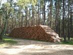 KRONOPLY: langfristiger und unkomplizierter Holzeinkauf-Partner