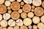 KRONOPLY ist für nachhaltige Waldbewirtschaftung mit dem Zertifizierungssystem Pan European Forest Certification (PEFC<sup>TM</sup>) sowie dem Forest Stewardship Council (FSC®) zertifiziert.